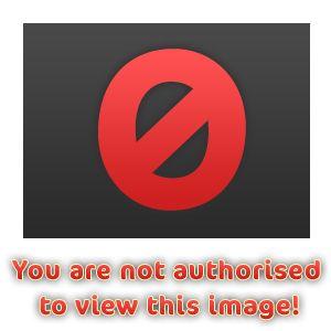 жена томаса андерса нора фото